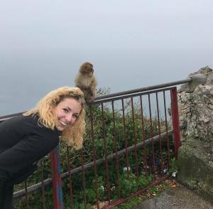 Monkey and a Monkey
